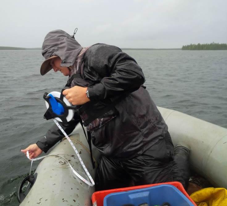 Employé de la CCSN mesurant la profondeur pour les filets de pêche près de McClean