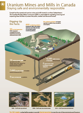 Nuclear Power Plants infographic